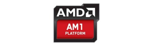 AMD Socket (AM1)